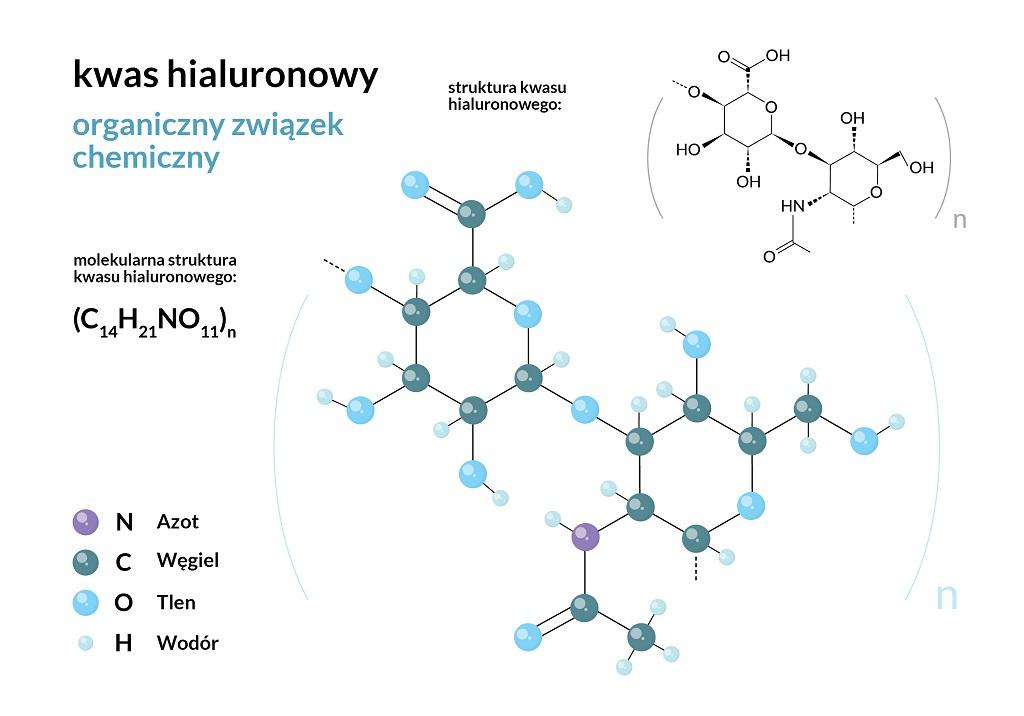 kwas hialuronowy budowa